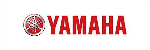 Yamaha OEM 2007-09 Rhino 450 Digital Meter Kit Multi-Function LCD SSV-2P581-20-00